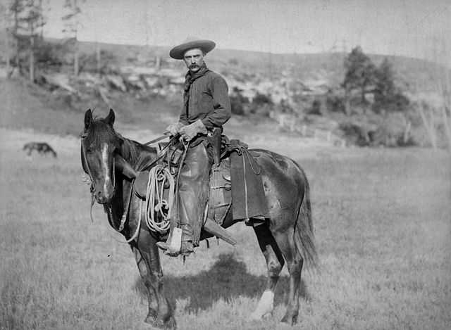 Cowboy in Kansas 1888