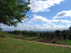 Monticello Plantation