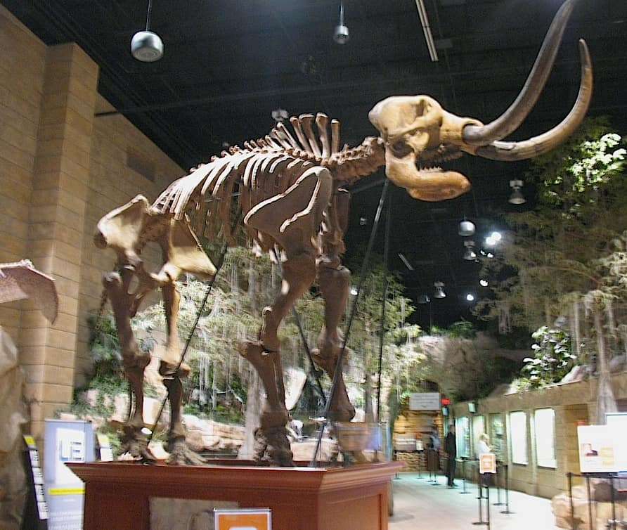 What The Hell Visiting The Creation Museum In Petersburg