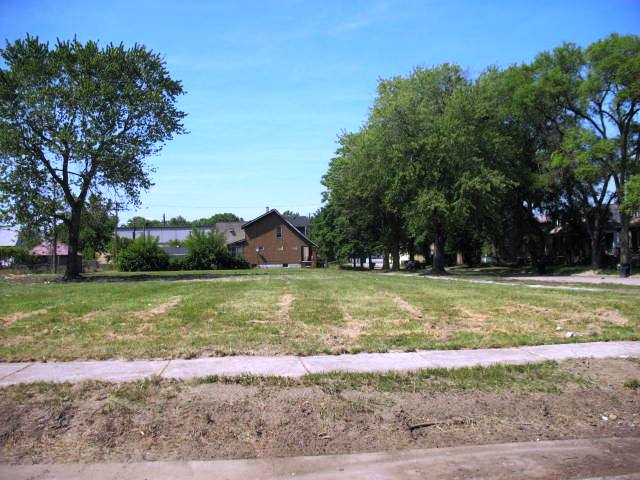 Cleared lot in Detroit for urban farming