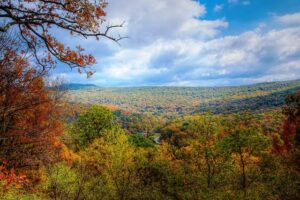 View from the top of a mountain in the Ozarks.