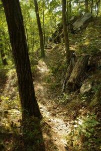 Ozark mountain hiking trail.
