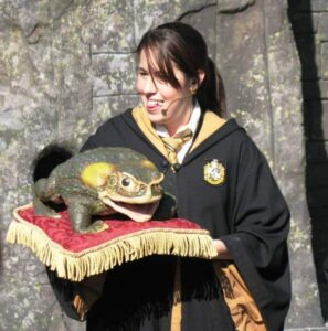 A Hogswart graduate holds a singing frog on a velvet pillow at the Wizarding World of Harry Potter.