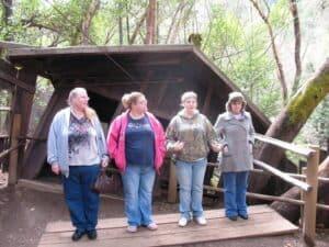 Oregon Vortex height illusion