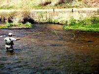 An angler fly fishing in the waters near Deckers, Colorado.