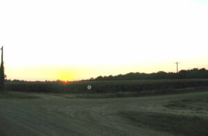 Sunset over a dirt road.