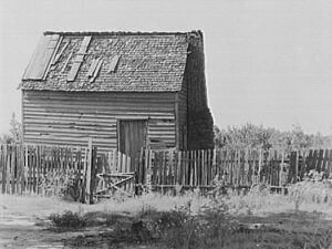 Southern cabin