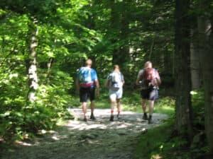 Lower portion of Tuckerman Ravine Trail.
