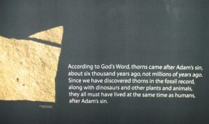 Twisted logic at The Creation Museum