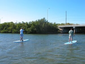 Malcolm Logan and Tim Lincoln paddleboarding in Key West