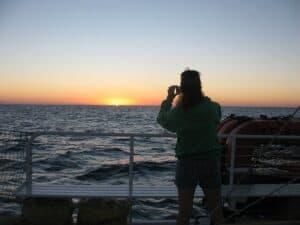 Sunset aboard Fury Catamarans' Rum and Reggae Tour.
