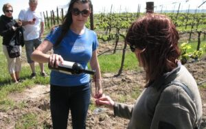 Tour of the Gundlach-Bundschu Winery
