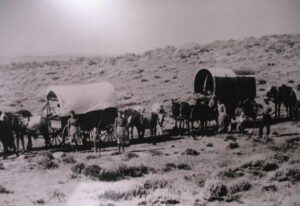 Women standing beside covered wagons on the Oregon Trail