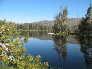 Sylvan Lake in Yellowstone National Park