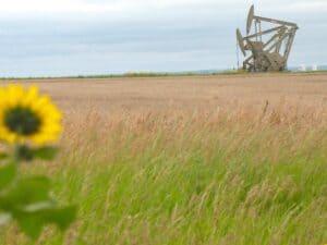 Oil wells near Williston, North Dakota