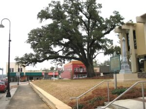 Courthouse lawn in Marianna, FL
