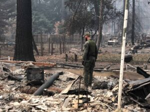A Forest Service investigator inspects the damage